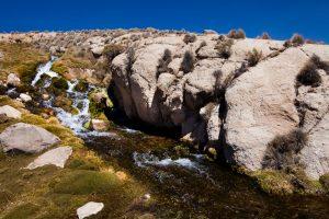 Manantial De Agua Que Riega El Pueblo De Parinacota 3