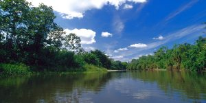 Ver Centroamerica Panama Parque Nacional Dairen 02